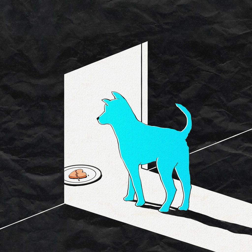 כלב הולך לאכול