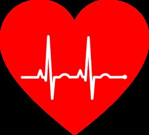 לב ודופק